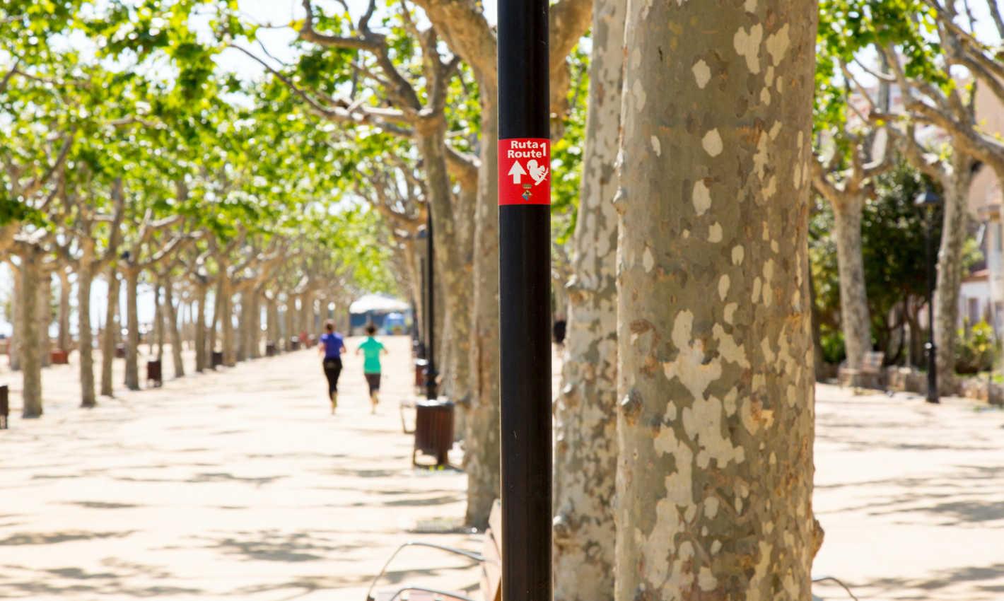 Rutes de natura al Passeig de Manuel Puigvert