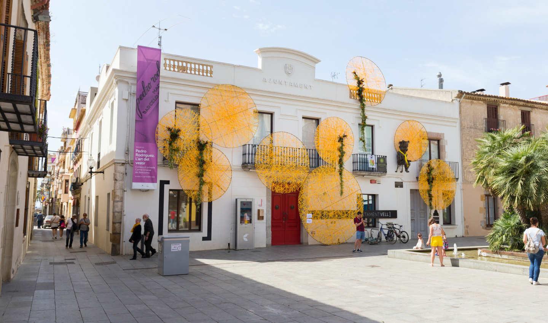 Ajuntament Vell decorat pel Moments de Flors