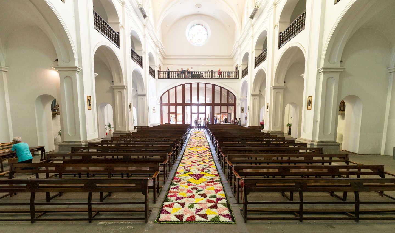 Catifa de Corpus dins l'església de Calella